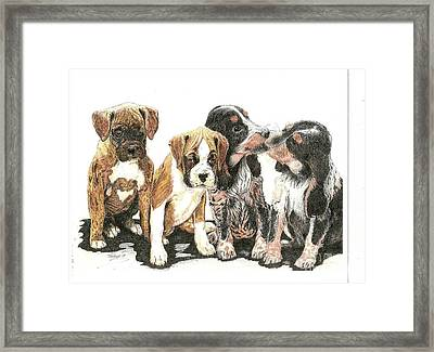 Pick Of The Litter Framed Print by Bill Hubbard