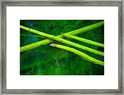 Pick Up Sticks Framed Print
