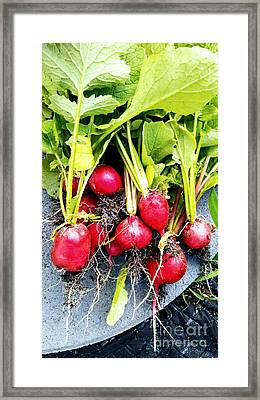 Picked Just For You Framed Print by Chrisann Ellis