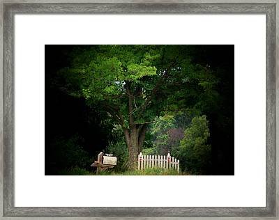 Picket Fence Mailbox Framed Print by Michael L Kimble