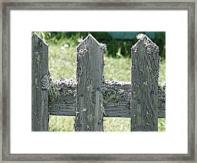 Picket Fence Framed Print by Mg Blackstock