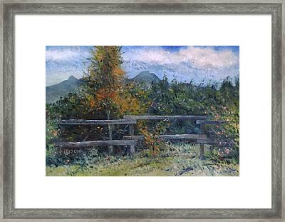 Picket Fence Near Heidelberg Western Cape South Africa Framed Print