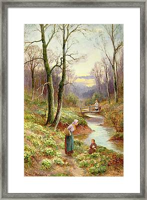 Picking Primroses  Framed Print by Ernest Walbourn