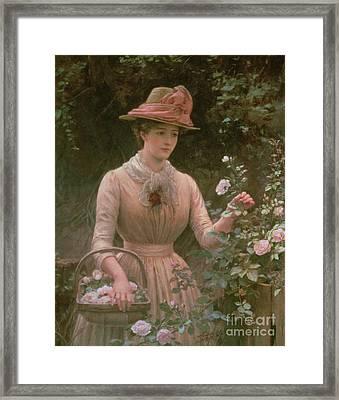 Picking Roses Framed Print