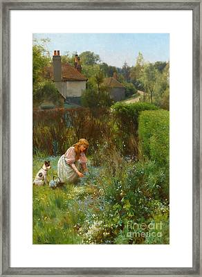 Picking Wild Flowers In The Hedgerow Framed Print