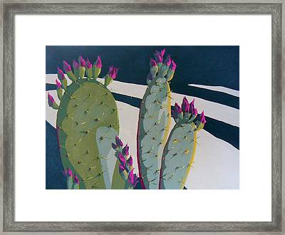 Picky Picky Picky Too Framed Print by Sandy Tracey