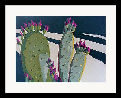 Cactus Spines Framed Prints