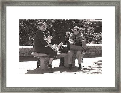 Picnic Lunch Framed Print by Jez C Self