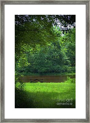 Picnic Perfect Framed Print by Skip Willits