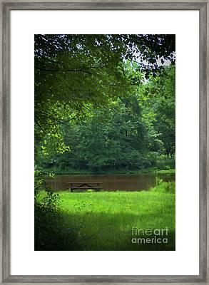 Picnic Perfect Framed Print