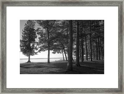 Picnic Table View-newport State Park Framed Print by Stephen Mack