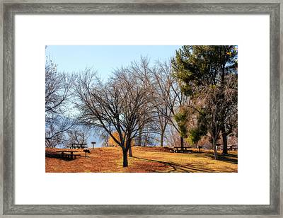 Picnic Framed Print by Tammy Espino