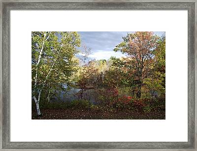 Picture Perfect Framed Print by David and Lynn Keller