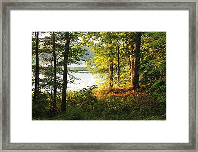Picturesque Framed Print by Mark  France