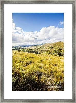 Picturesque Tasmanian Field Landscape Framed Print