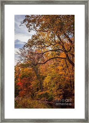 Pidcock Creek Framed Print