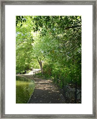 Piedmont Park Path Framed Print by Utopia Concepts