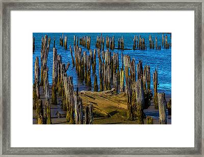 Pier Posts In Decay Framed Print