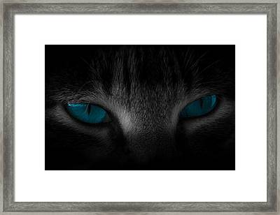 Piercing Framed Print by Cecil Fuselier