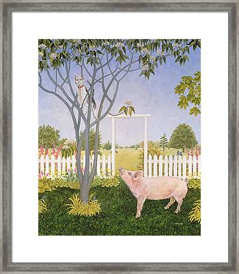 Pig And Cat Framed Print by Ditz