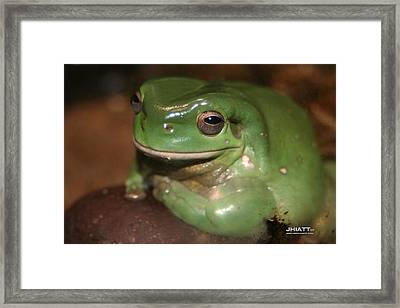 Pig In Mud Framed Print