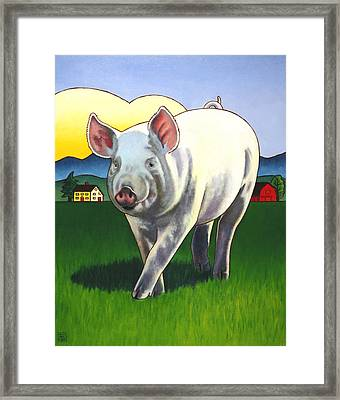 Pig Newton Framed Print by Stacey Neumiller