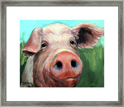 Pig On Blue And Green Framed Print