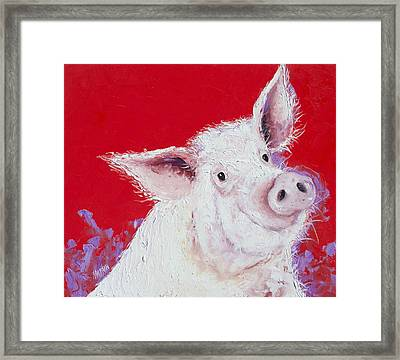 Pig Painting On Red Background Framed Print by Jan Matson