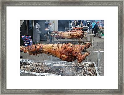Framed Print featuring the photograph Pig Roast by Bill Thomson