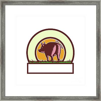 Pig Tail Rear Circle Woodcut Framed Print by Aloysius Patrimonio