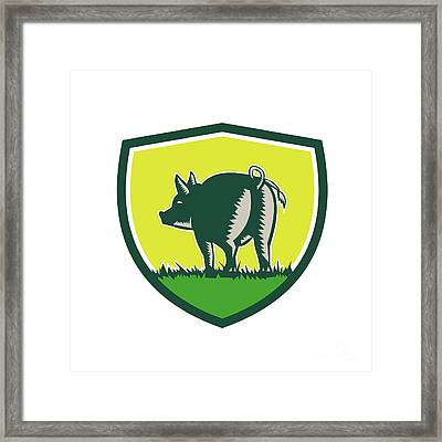 Pig Tail Rear Crest Woodcut Framed Print by Aloysius Patrimonio