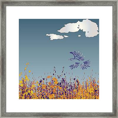 Pigeon Framed Print by Miley Art