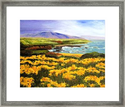 Pigeon Point Framed Print by Jamie Frier