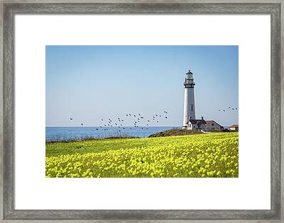 Pigeon Point Light Station Historic Park Framed Print