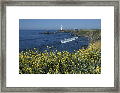 Pigeon Point Panorama Framed Print