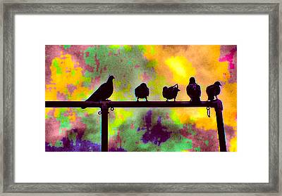 Pigeons In Abstract 2 Framed Print