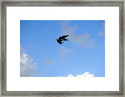 Pigeons Shadow Framed Print by Isam Awad