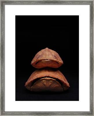 Piggyback Ride Framed Print by Adam Long