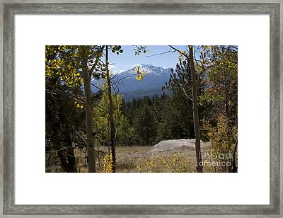 Framed Print featuring the photograph Pikes Peak Framed Aspens Landscape by Marta Alfred