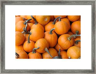 Pile Of Pumkins Framed Print by Bradford Martin