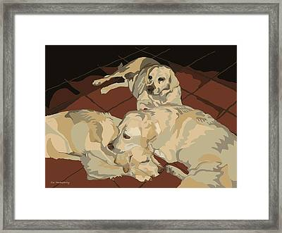 Pile Of Three Pups Framed Print by Su Humphrey