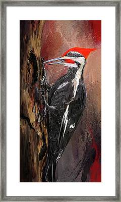 Pileated Woodpecker Art Framed Print by Lourry Legarde