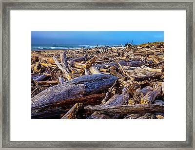 Piles Of Driftwood On Beach Framed Print by Garry Gay