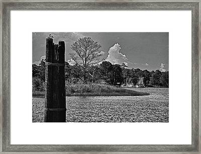 Piling And The Shrimpboats Framed Print