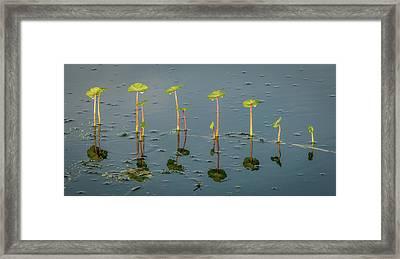 Pillars Of Life Framed Print