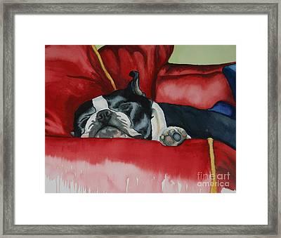 Pillow Pup Framed Print
