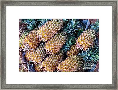 Framed Print featuring the photograph Pinapples by Tim Gainey
