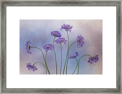 Pincushion #3 Framed Print by Rebecca Cozart