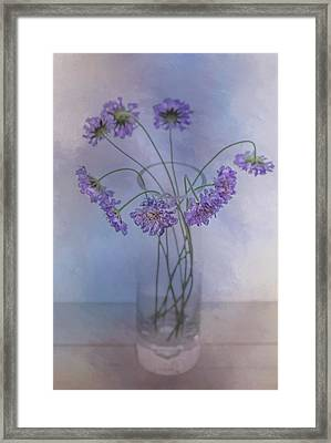 Pincushion #5 Framed Print by Rebecca Cozart