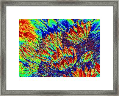 Pincusion Electrified Framed Print